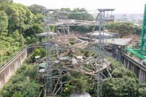 13人のチンパンジーが暮らす京都大学霊長類研究所の屋外放飼場(愛知県犬山市)